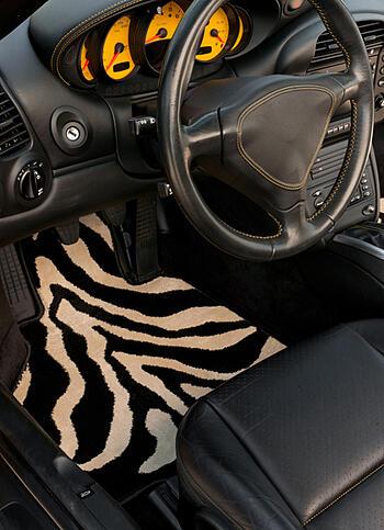 driver zebraV