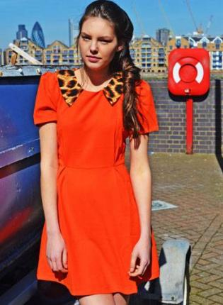 Orange Dress with Leopard Collar