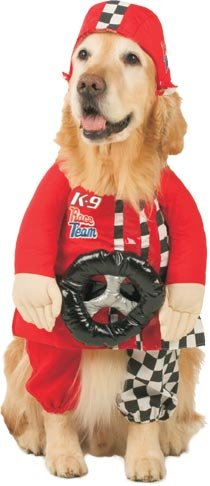 Racecar Driver pet Halloween costume on golden retriever