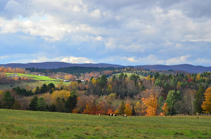 Beautiful Fall Foliage in the hills of Vermont during Autumn