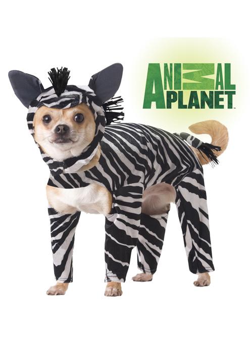 Animal Planet Zebra pet costume