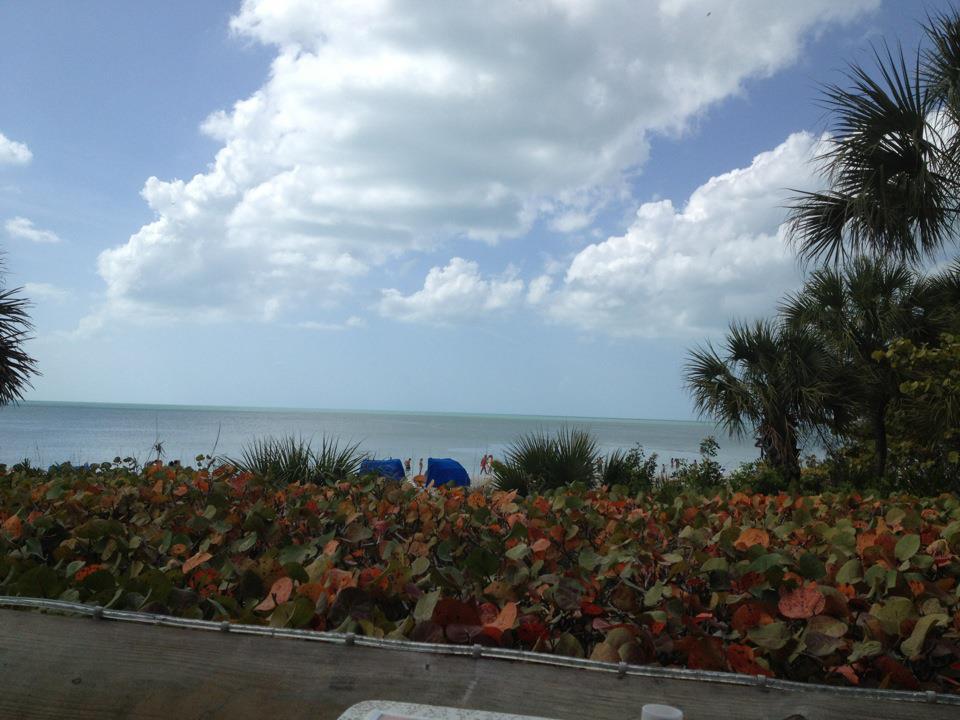 The beach at Naples, FL