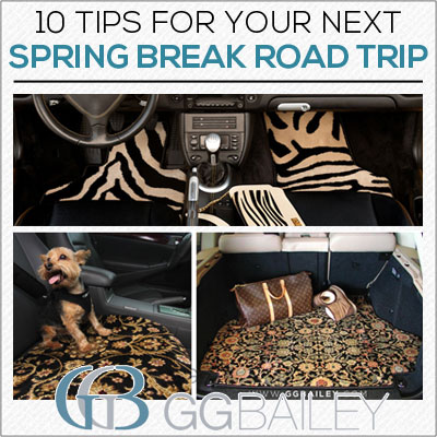 Spring Break Trip Tips