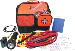 emergency roadside kit car mat