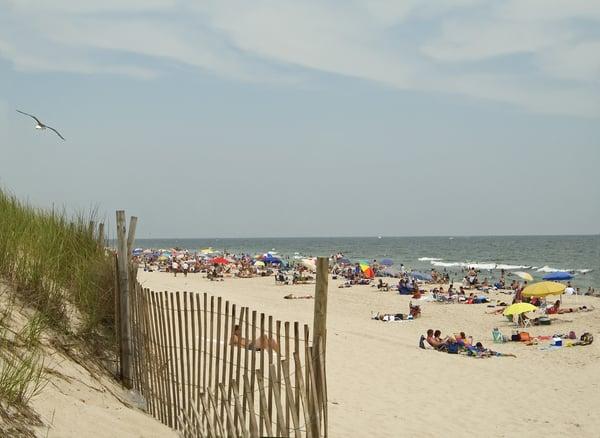 Jersey_Shore.jpg
